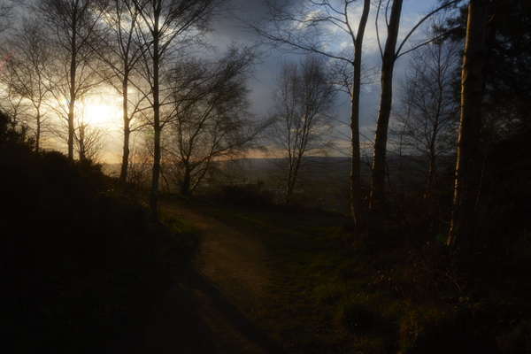 Chevin forest Park, Otley, yorkhire, landscape photograph