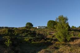White Wells view on Ilkley Moor one year after the fire