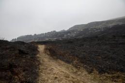 Landscape of Ilkley Moor after blaze