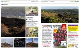 Yorkshire Post Photo Essay on Ilkley Moor Fire